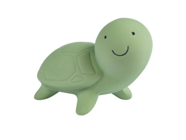 Turtle - Natural Rubber Teether, Rattle & Bath Toy