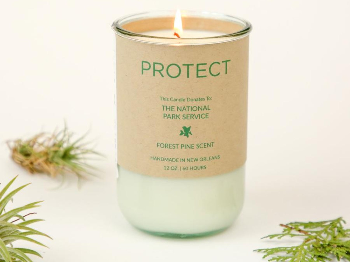 PROTECT Soy Candle – Forest Pine Scent