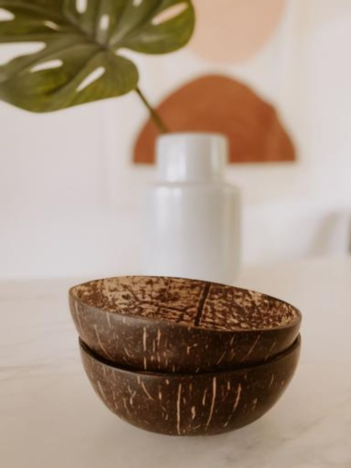 Coconut Bowl – Large