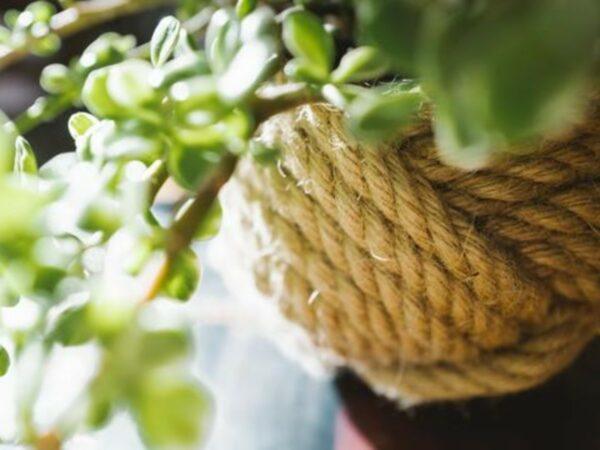 Unbound Woven Planter