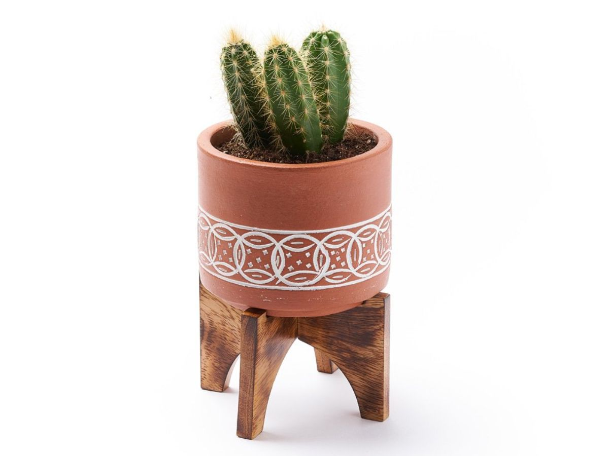 Terra Mango Planter with Stand
