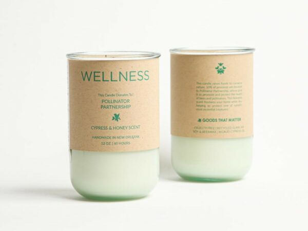 WELLNESS Soy Candle - Rigaud Cypress Scent