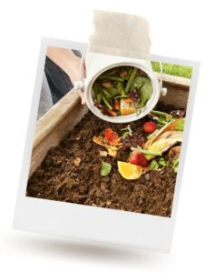 Vegetable scraps being tossed in a garden for composting
